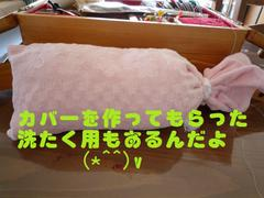 2008090006_2